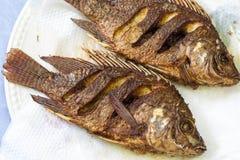 Abgefeuerte Fische Lizenzfreie Stockbilder