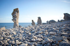 Abgefressene Kalksteinstapel in der Insel von Faro in Schweden Stockbilder