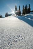 abgehobener Betrag 2016 auf Schnee Lizenzfreie Stockfotos