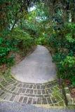 Abgelegener Garten-Weg stockfoto
