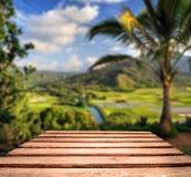 Abgenutzte Tischplatte mit tropischem Hintergrund Stockfotos