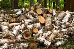 Abgespaltetes Holz Lizenzfreie Stockbilder