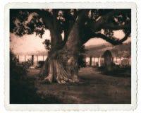 Abgetöntes viktorianisches Lochkamera-Art-Kirchhof-Bild stockfoto
