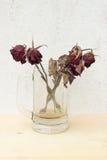 Abgetragene Rotrose im Glas auf Sperrholzhintergrund und -Betonmauer Stockfotos