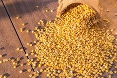 Abgezogene gelbe Sojabohne im kleinen Sack auf Holztischhintergrund Stockfotografie