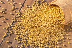 Abgezogene gelbe Sojabohne im kleinen Sack auf Holztischhintergrund Lizenzfreie Stockbilder