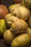 Abgezogenes Baby potatoe Stockfoto