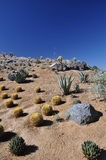 Abhang in der Wüste Lizenzfreies Stockbild