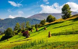 Abhang mit Reihe von Heuschobern auf ländlichem Feld Stockfotos