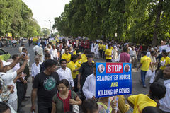 People rallying outside Gandhi Museum Royalty Free Stock Images