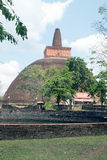 Abhayagiri vihara Royaltyfria Bilder