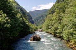 Abhazia Arkivbilder