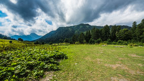 Abhazia Royaltyfri Fotografi