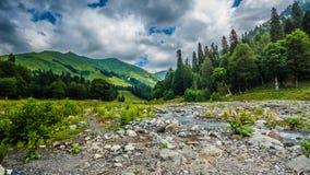 Abhazia Royaltyfri Foto