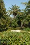 Abhaziya Botanichesky庭院在苏呼米市 库存照片