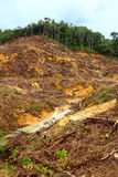 Abholzung Lizenzfreie Stockbilder