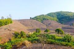 Abholzung auf dem Berg für die Landwirtschaft in Chiang Rai, Tha Stockbild