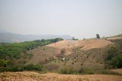 Abholzung auf dem Berg für landwirtschaftliches in Payao-Provinz Stockbilder
