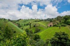 Abholzung auf dem Berg für landwirtschaftliches an Tak-Provinz Lizenzfreie Stockfotos
