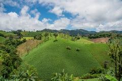 Abholzung auf dem Berg für landwirtschaftliches an Tak-Provinz Lizenzfreie Stockfotografie