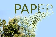 Abholzung für die Papierherstellung Stockfotos