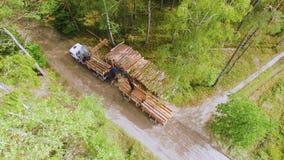 abholzung Hydraulischer Ladergabelstapler lädt Klotz auf Anhänger Ladenbauholz oder -bauholz in einen LKW im Wald stock video