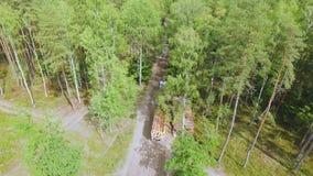 abholzung Hydraulischer Ladergabelstapler lädt Klotz auf Anhänger Ladenbauholz oder -bauholz in einen LKW im Wald stock video footage