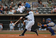 Abiatal Avelino, Charleston RiverDogs Royalty Free Stock Photos