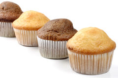 Abiding muffins Royalty Free Stock Photo