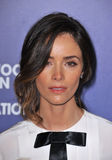 abigail spencer Arkivbild