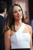 Abigail Spencer Royalty Free Stock Image