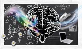 Abilità per a destra e a sinistra il cervello Immagine Stock
