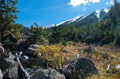 Abineau Trail Stock Photos