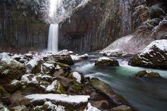 Abiqua cade nell'inverno fotografie stock libere da diritti