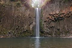 Abiqua cai no close up de Oregon Imagem de Stock
