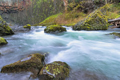 Abiqua Creek in Spring Season Oregon. Abiqua Creek in Marion County Oregon in Springtime Stock Photo