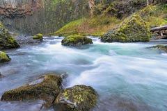 Abiqua liten vik i vårsäsongen Oregon Arkivfoto