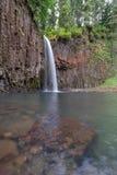Abiqua nedgångar i Oregon vårsäsong Royaltyfri Foto