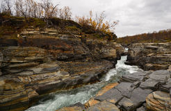 Abisko Canyon Stock Image