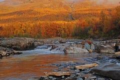 Abisko Vagabund im Herbst Stockfotografie