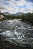 Abiskojaure flod som flödar till och med den Abisko nationalparken i Lapland, Sverige Arkivfoto