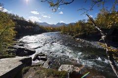 Abiskojokk 河在秋天在阿比斯库国家公园国家公园,瑞典 免版税库存图片