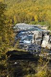 Abiskojokk Flod i höst i den Abisko nationalparken, Sverige royaltyfria bilder