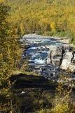 Abiskojokk Rzeka w jesieni w Abisko parku narodowym, Szwecja obrazy royalty free