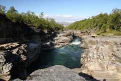 abiskonationalpark Arkivbilder