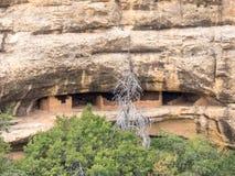 Abitazione del nativo americano in Mesa Verde Fotografia Stock