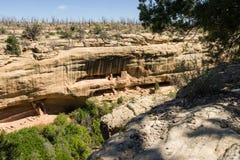 Abitazione di scogliera al tempio del fuoco, Mesa Verde National Park Immagini Stock