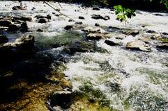 Abkühlen in dem rauschender Fluss stockbild