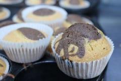 Abkühlende Muffins auf dem Behälter Lizenzfreies Stockfoto