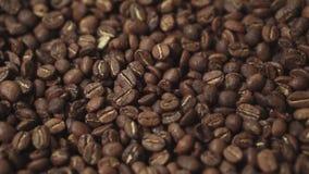 Abkühlender Prozess von frischen Röstkaffeebohnen Beimischvorgang von frischen Röstkaffeebohnen Keine Leute herum inside stock video